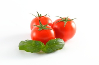 Tomaten-Basilikum
