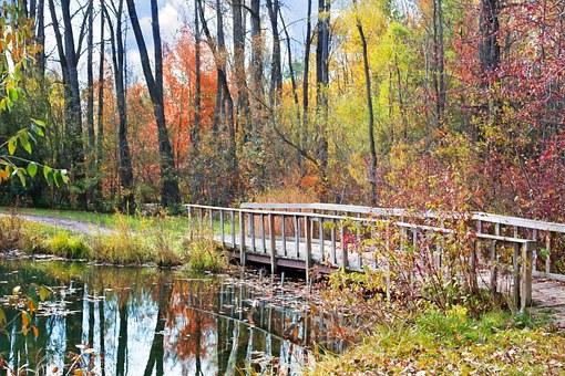 paysage de l'automne